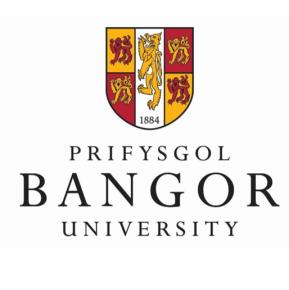bangor_logo.jpg